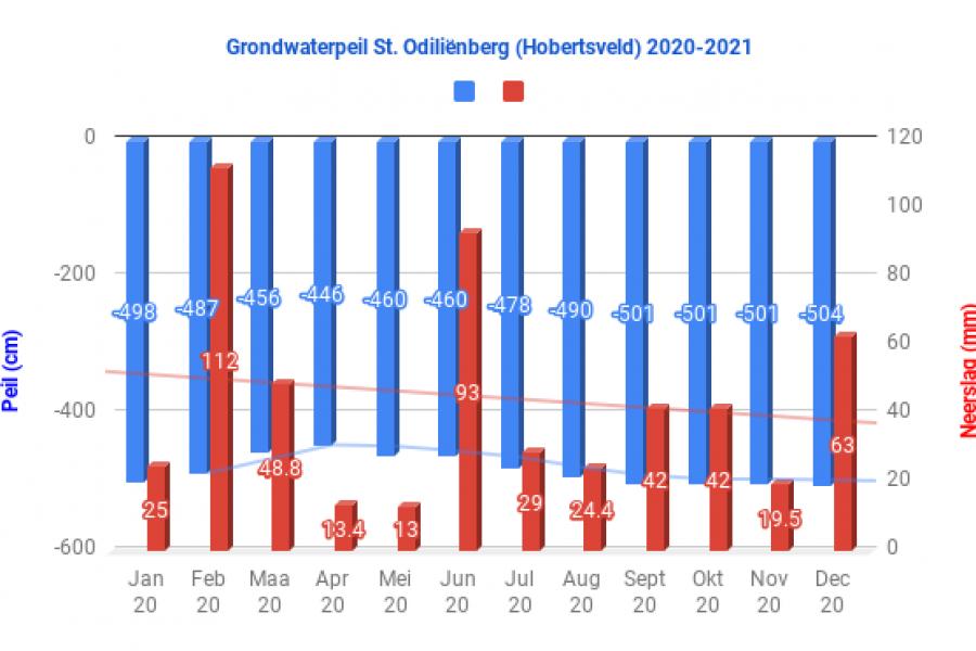 Grondwaterpeil St. Odiliënberg (Hobertsveld) 2020-2021